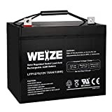 Weize 12V 75AH Deep Cycle Battery for Wayne ESP25...