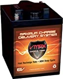 VMAXTANKS 6 Volt 225Ah AGM Battery: High Capacity...
