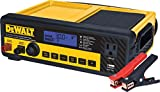 DEWALT DXAEC80 30 Amp Bench Battery Charger: 80...