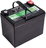 Interstate Batteries 12V 35AH Sealed Lead Acid...